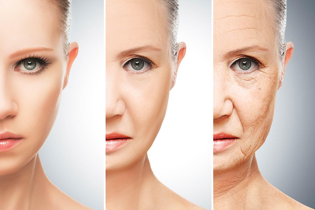 anti-aging-microbiom
