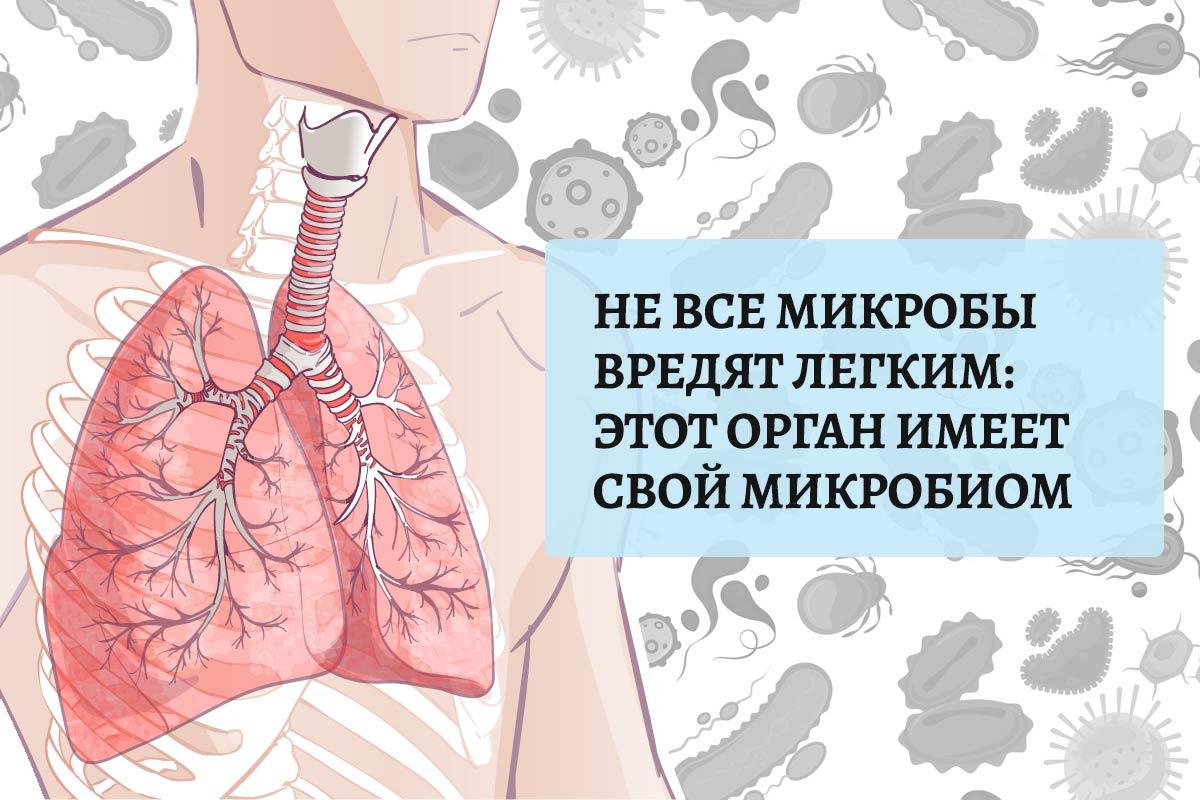 lungs-ru