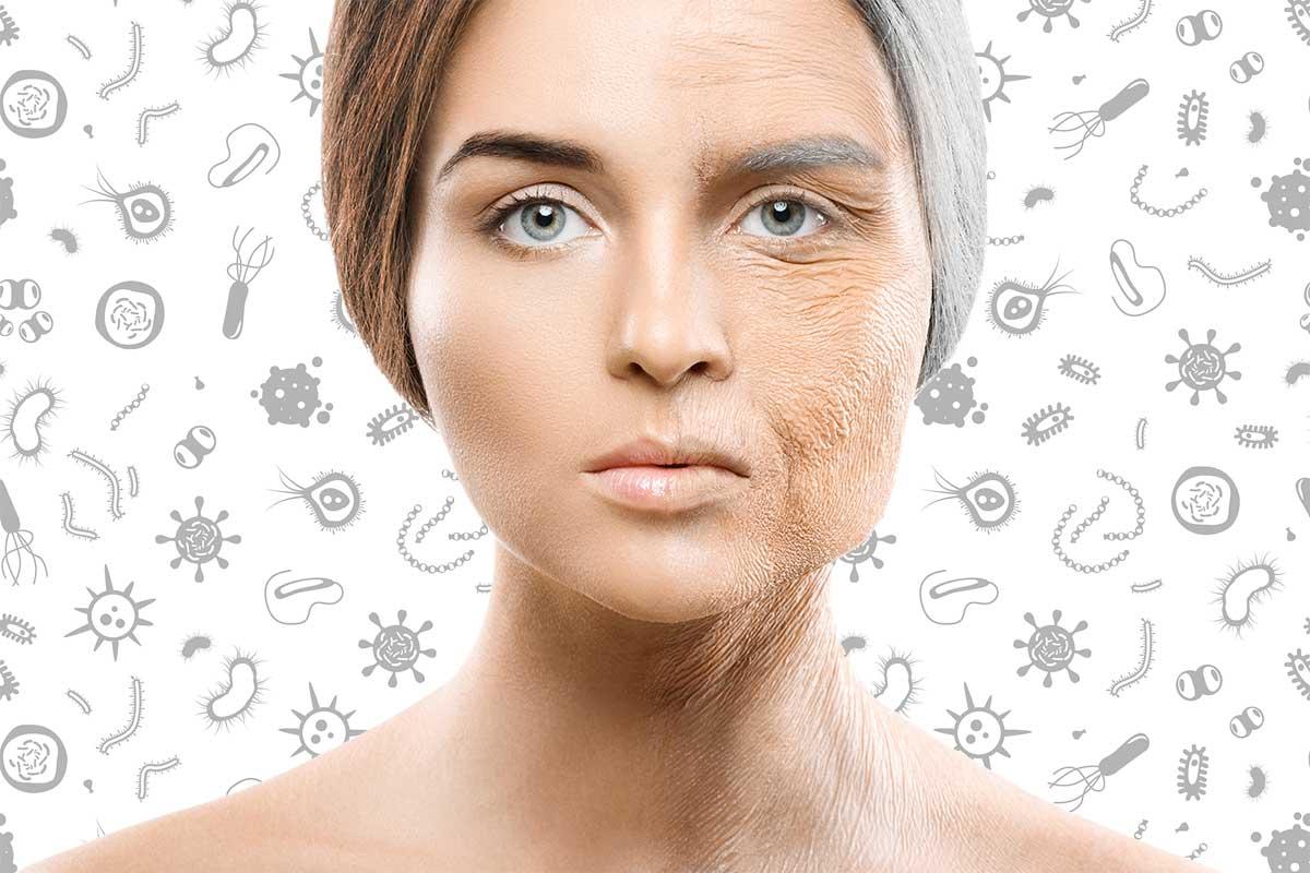 мікробіом та старіння людини