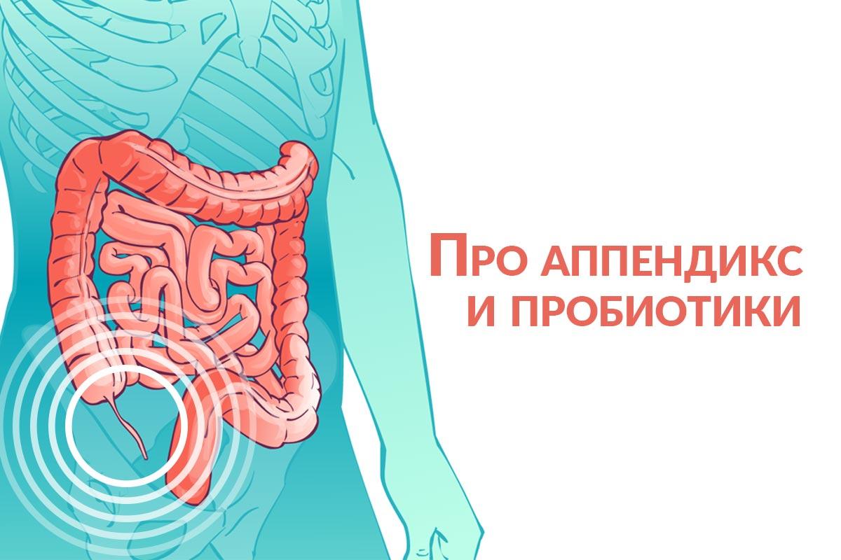 про аппендикс и пробиотики